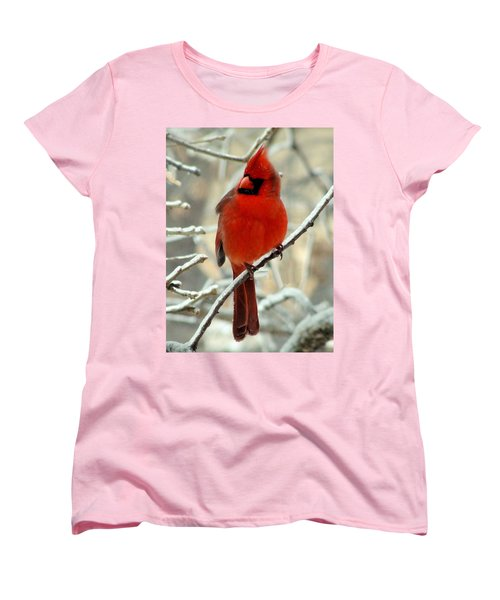 Women's T-Shirt (Standard Cut) featuring the photograph Male Cardinal  by Janette Boyd