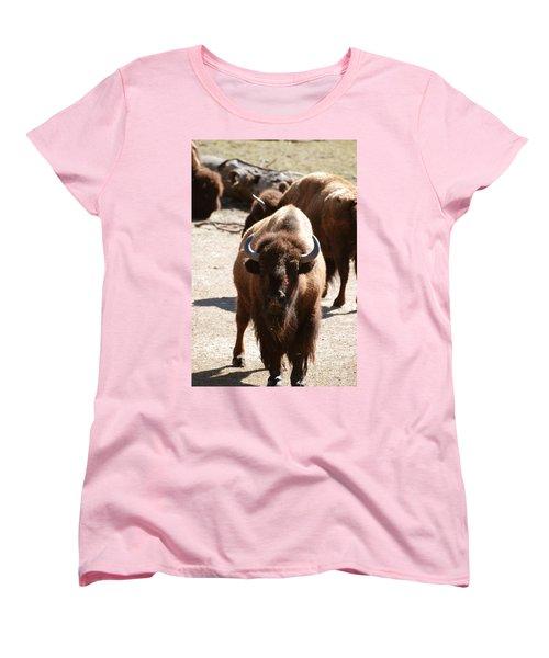North American Bison Women's T-Shirt (Standard Cut) by DejaVu Designs