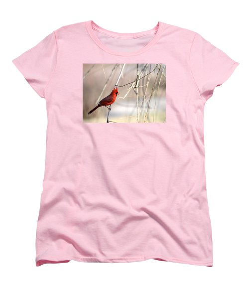 Women's T-Shirt (Standard Cut) featuring the photograph Northern Cardinal II by Deena Stoddard