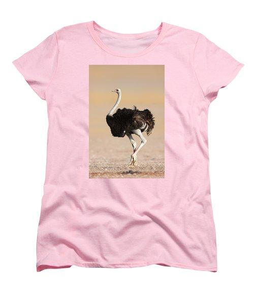 Ostrich Women's T-Shirt (Standard Cut) by Johan Swanepoel
