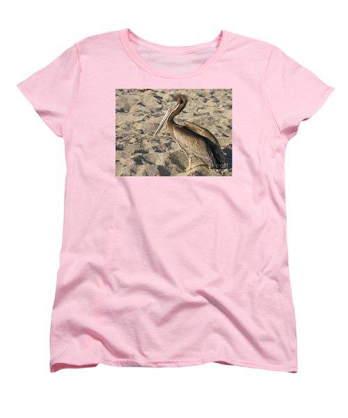 Pelican On Beach Women's T-Shirt (Standard Cut) by DejaVu Designs
