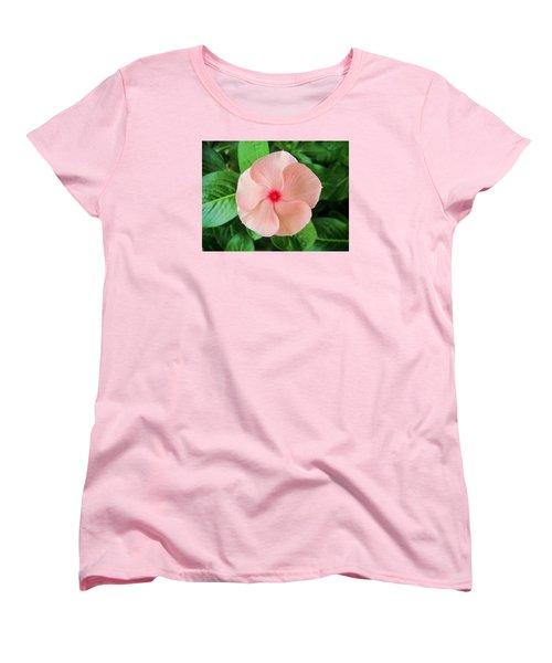 Pink Perfection Women's T-Shirt (Standard Cut)