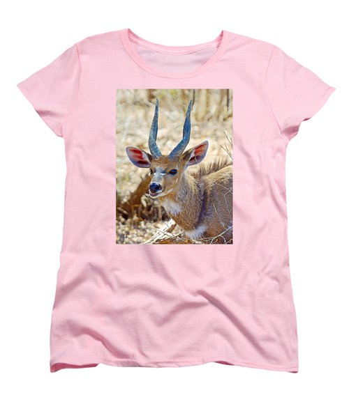 Portrait Of A Bushbuck In Kruger National Park-south Africa  Women's T-Shirt (Standard Cut) by Ruth Hager