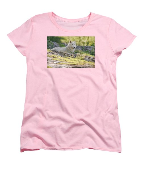 Women's T-Shirt (Standard Cut) featuring the photograph Resting Arctic Wolf by Wolves Only