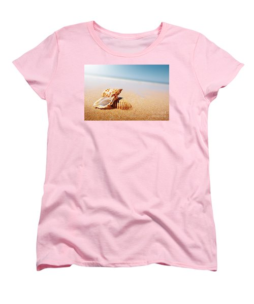 Seashell And Conch Women's T-Shirt (Standard Cut) by Carlos Caetano