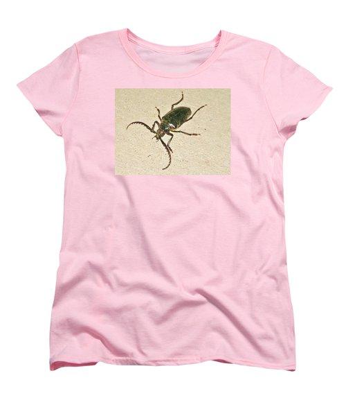 Spike Women's T-Shirt (Standard Cut) by Angela J Wright