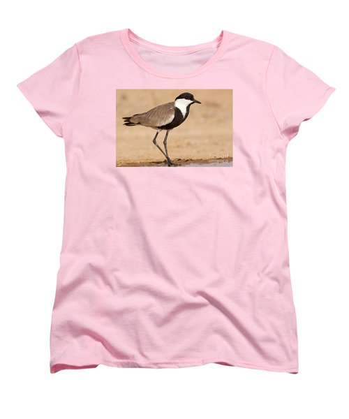 Spur-winged Lapwing Vanellus Spinosus Women's T-Shirt (Standard Cut) by Eyal Bartov