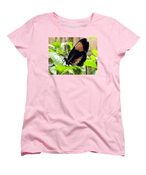 Striped Beauty Women's T-Shirt (Standard Cut) by Jennifer Wheatley Wolf