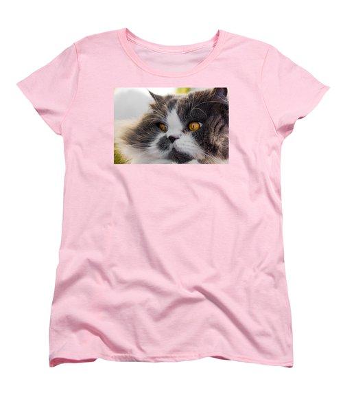 The Watching Cat Women's T-Shirt (Standard Cut) by Daniel Precht
