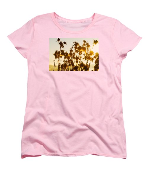 Women's T-Shirt (Standard Cut) featuring the photograph Thistles In The Sunset by Chevy Fleet