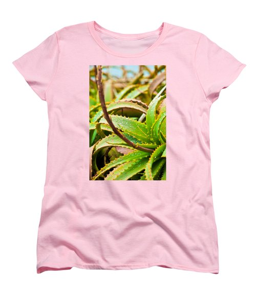 After The Rain Women's T-Shirt (Standard Cut) by Melinda Ledsome