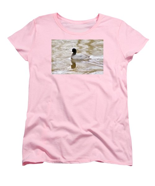 American Coot 1 Women's T-Shirt (Standard Cut) by Joe Faherty