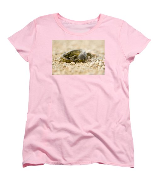 Close Up Tiger Salamander Women's T-Shirt (Standard Cut) by Mark Duffy