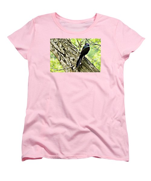 Grackle 1 Women's T-Shirt (Standard Cut) by Joe Faherty