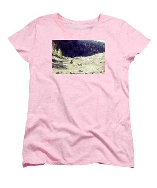 Women's T-Shirt (Standard Cut) featuring the photograph Open Range by Bonfire Photography