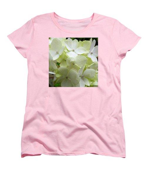 White Hydrangea Women's T-Shirt (Standard Cut) by Barbara Moignard
