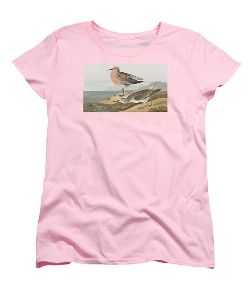Red-breasted Sandpiper  Women's T-Shirt (Standard Cut) by John James Audubon