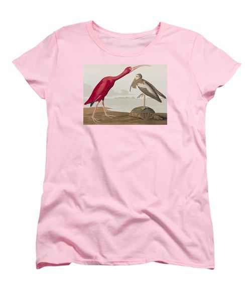 Scarlet Ibis Women's T-Shirt (Standard Cut) by John James Audubon