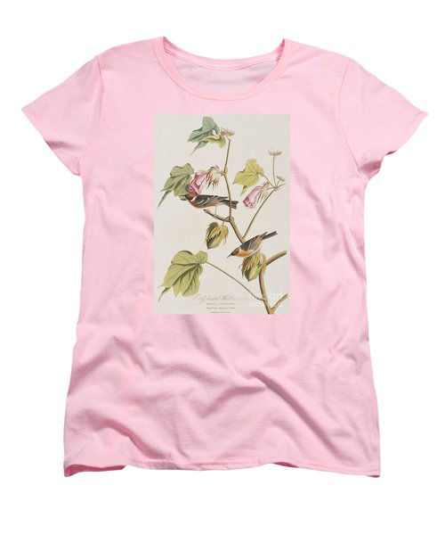 Bay Breasted Warbler Women's T-Shirt (Standard Cut) by John James Audubon