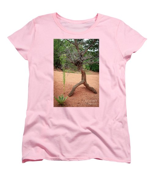 Garden Of The Gods Women's T-Shirt (Standard Cut)