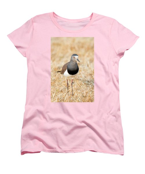 African Wattled Lapwing Vanellus Women's T-Shirt (Standard Cut) by Panoramic Images
