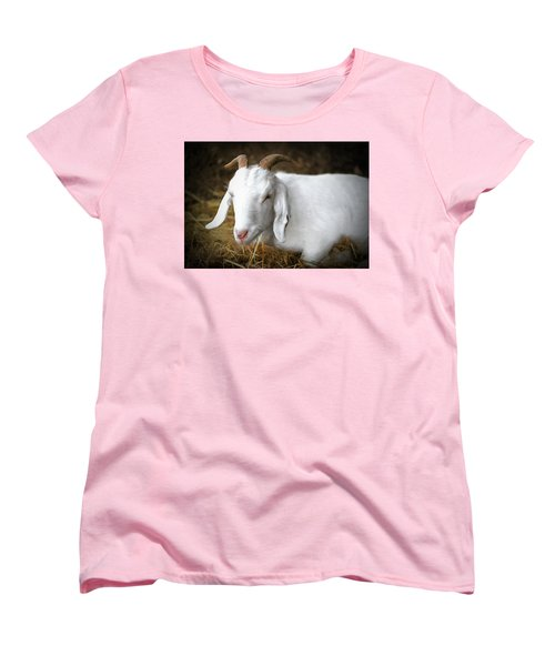 Women's T-Shirt (Standard Cut) featuring the photograph Bedded Down by Marion Johnson