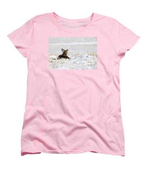 Bedded Fawn In Snowy Field Women's T-Shirt (Standard Cut) by Brook Burling
