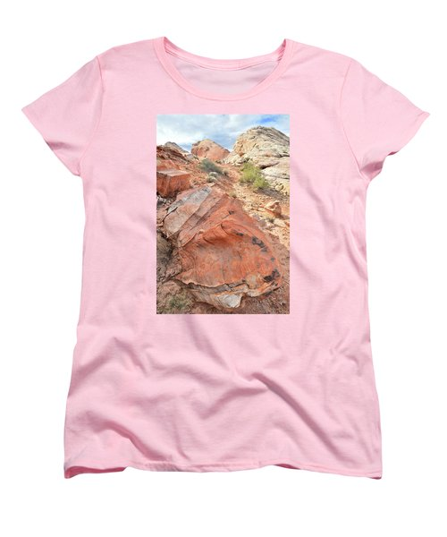 Canyon Of Color In Valley Of Fire Women's T-Shirt (Standard Cut) by Ray Mathis