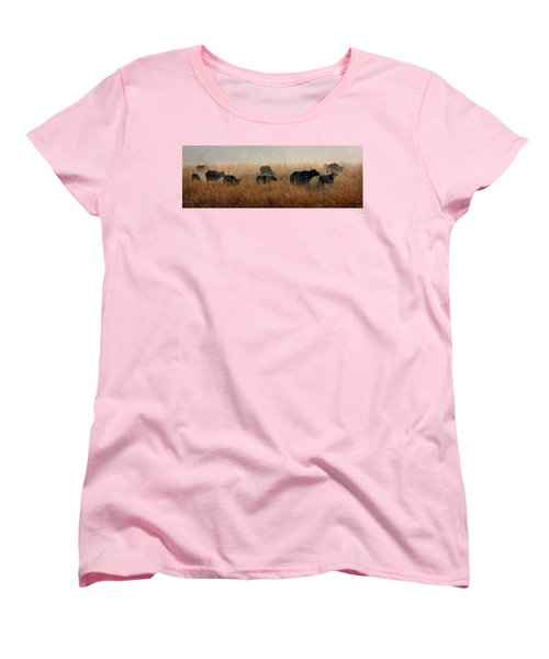 Cape Buffalo Herd Women's T-Shirt (Standard Cut) by Joe Bonita
