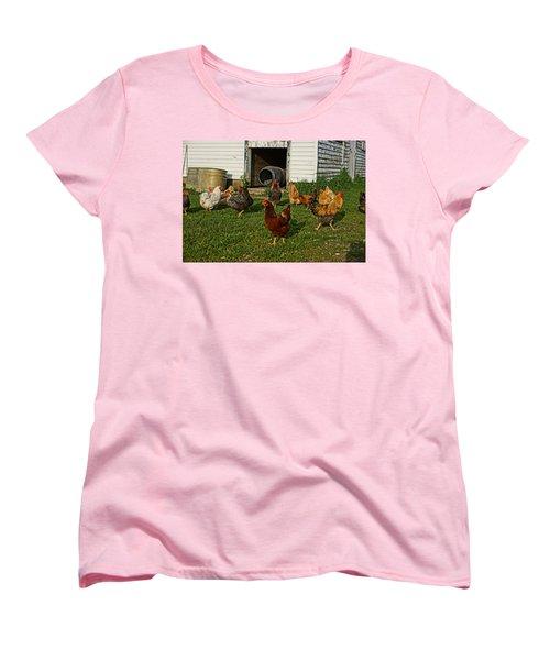 Chicken Scratch Women's T-Shirt (Standard Cut) by Steven Clipperton
