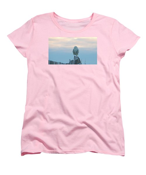 Cold Morning Light Women's T-Shirt (Standard Cut) by Stephen Flint