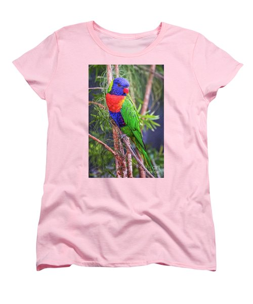 Colorful Parakeet Women's T-Shirt (Standard Cut) by Stephanie Hayes