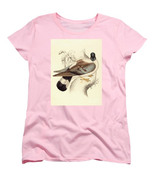 Columba Leuconota, Snow Pigeon Women's T-Shirt (Standard Cut) by Elizabeth Gould