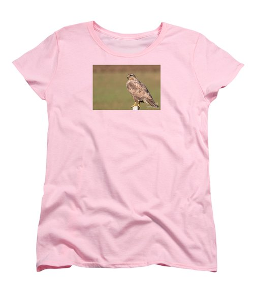 Women's T-Shirt (Standard Cut) featuring the photograph Common Buzzard Along The Highway Nis Budapest by Jivko Nakev