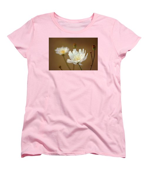 Death Valley Superbloom 303 Women's T-Shirt (Standard Cut) by Daniel Woodrum