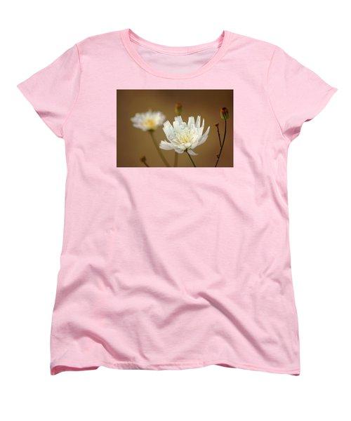 Death Valley Superbloom 303 Women's T-Shirt (Standard Cut)