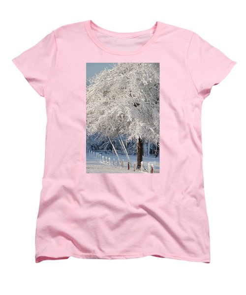 Dusted With Powdered Sugar Women's T-Shirt (Standard Cut) by Donna Bentley