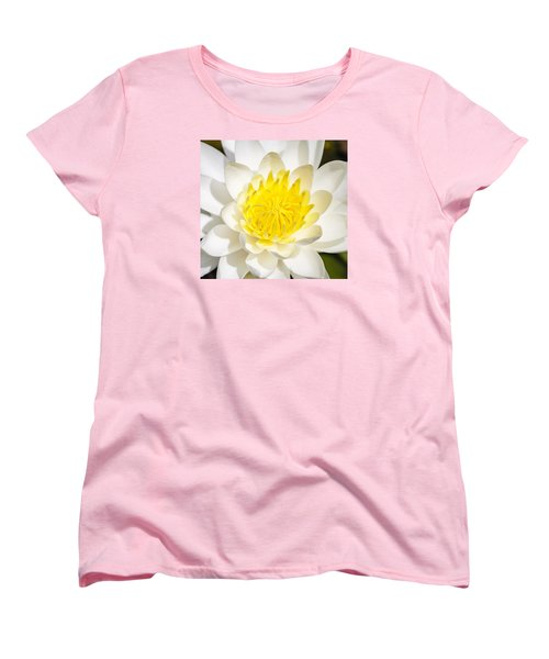 Elegant Lotus Women's T-Shirt (Standard Cut) by Christopher L Thomley