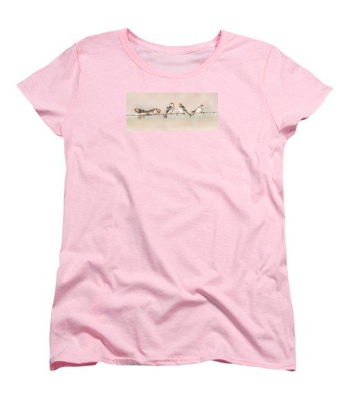 Fairy Martins Women's T-Shirt (Standard Cut) by Racheal  Christian