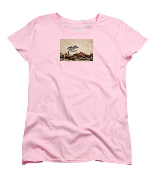 First Steps Women's T-Shirt (Standard Cut) by Alice Cahill