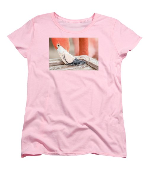 Women's T-Shirt (Standard Cut) featuring the photograph Flamingo At Sea World In Orlando Florida by Peter Ciro
