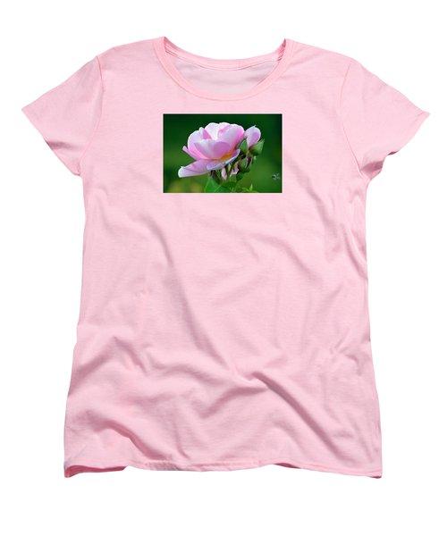 Flight Of The Pollinator. Women's T-Shirt (Standard Cut) by Terence Davis