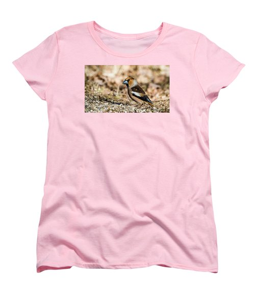 Hawfinch's Gaze Women's T-Shirt (Standard Cut) by Torbjorn Swenelius