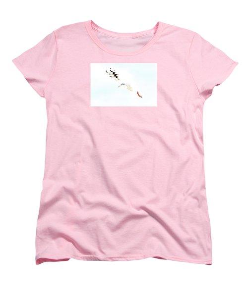 Hi Fly Women's T-Shirt (Standard Cut) by Gary Bridger