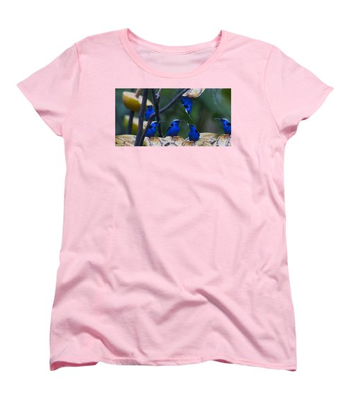 Honeycreeper Women's T-Shirt (Standard Cut) by Betsy Knapp