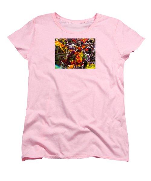 Hot Autumn Colors In The Vineyard 04 Women's T-Shirt (Standard Cut) by Arik Baltinester