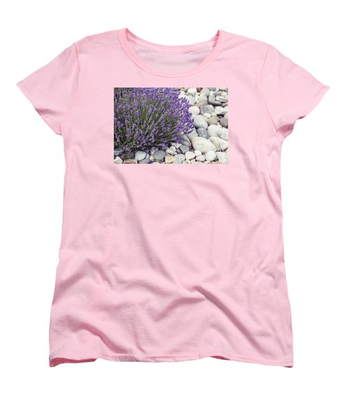 Lavender Flower In The Garden,park,backyard,meadow Blossom In Th Women's T-Shirt (Standard Cut) by Jingjits Photography