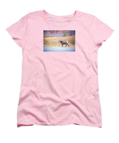 Leader Of The Herd Women's T-Shirt (Standard Cut)
