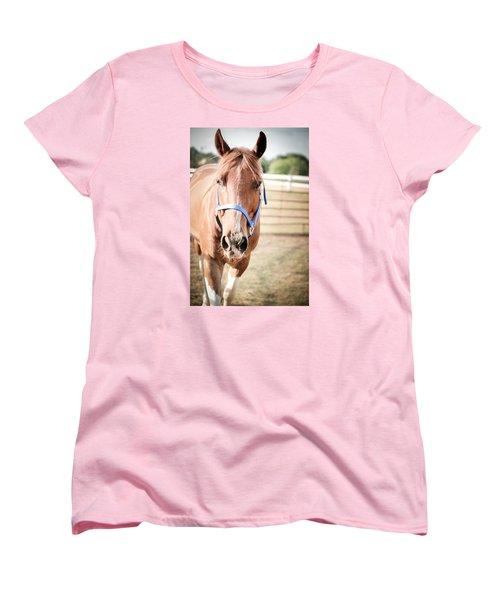 Women's T-Shirt (Standard Cut) featuring the photograph Light Brown Horse Named Flash by Kelly Hazel
