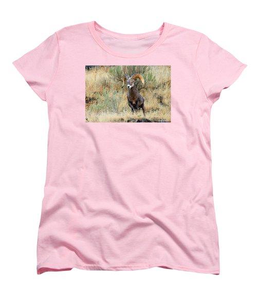 Loner IIi Women's T-Shirt (Standard Cut) by Steve Warnstaff